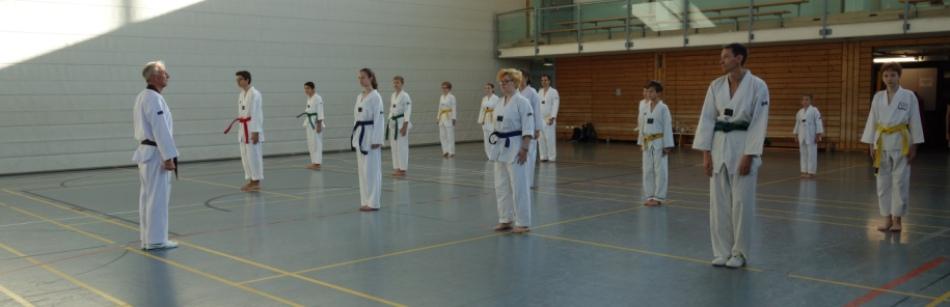 tsv1846nuernberg-taekwondo.de